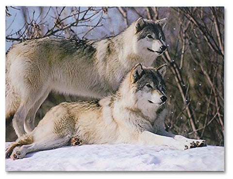 Wolf Canvas - LED Canvas Print with 2 Wolves in a Snowy Winter Forest Scene - Winter Scene with Wolves Picture - 16x12 Inch