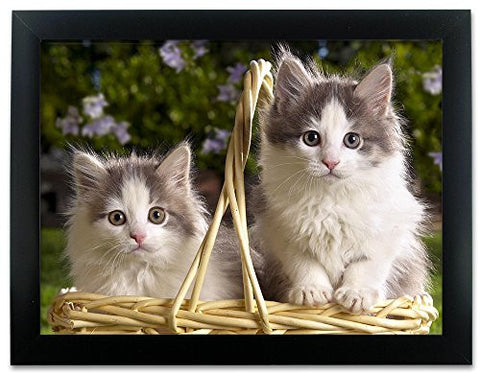 Kittens in a Basket 3D Dimensional Holographic Lenticular Animated Framed Poster Wall Art Print - Size: 17.5 In. x 13.5 In.