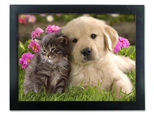 Cute Puppy and Kitten Framed Picture - 3D Holographic Framed Poster
