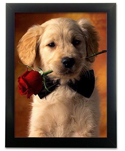 Puppy Holding a Red Rose 3D Picture