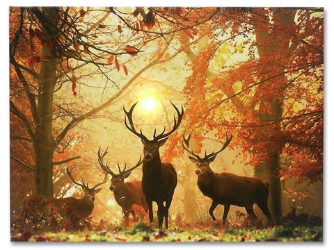 Deer Picture - LED Big Buck Wrapped Canvas Print
