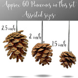 Natural Pine Cone Ornaments