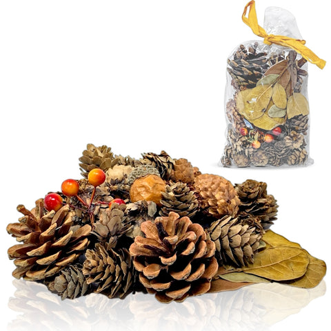 Pinecones and Fall Leaves - Bag of Pine Cones, Leaves, Acorn, Orange Berries (3354)