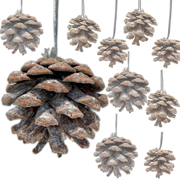White Washed Pinecone Ornaments