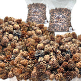 Natural Brown Pinecones