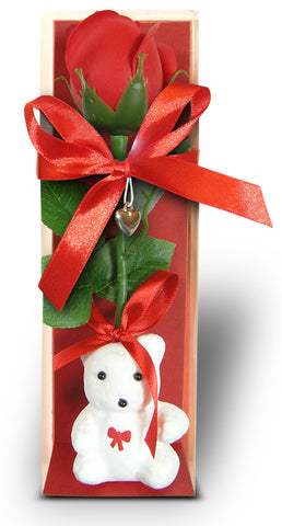 Rose and Teddy Bear Gift Set