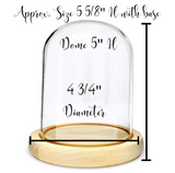 "Clear Glass Dome with Base - Approx. 5 5/8"" X 4 3/4"" - Tall Unfinished Wooden Base - Cloche Display Case"