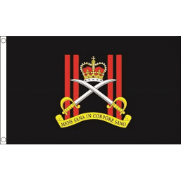 Army Physical Training Corps Flag - British Military Flags - United Flags And Flagstaffs