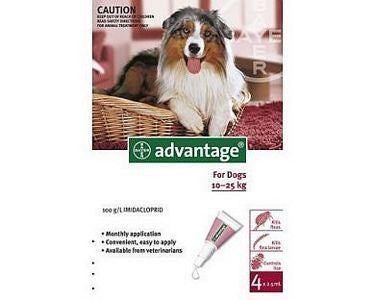 Advantage Large Dog (10-25kg)