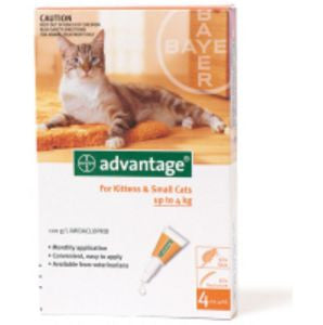 Advantage Small Cat (up to 4kg)
