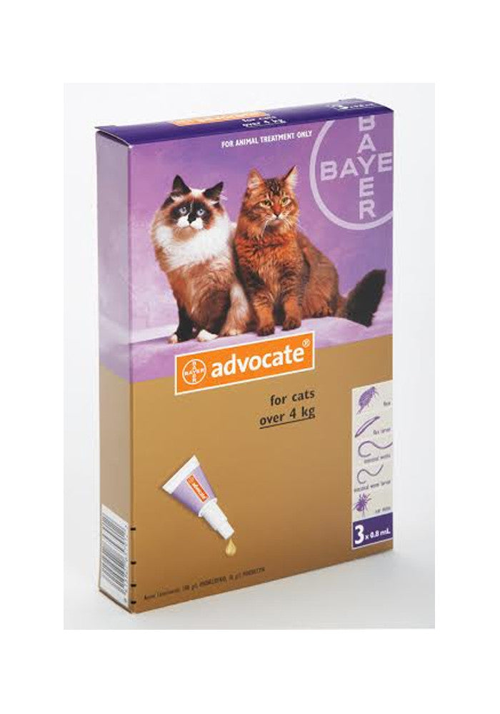 Advocate Large Cat (over 4kg)