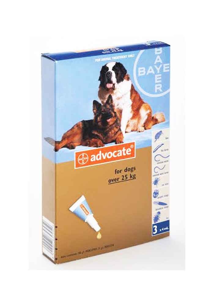 Advocate Extra Large Dog (25kg+)