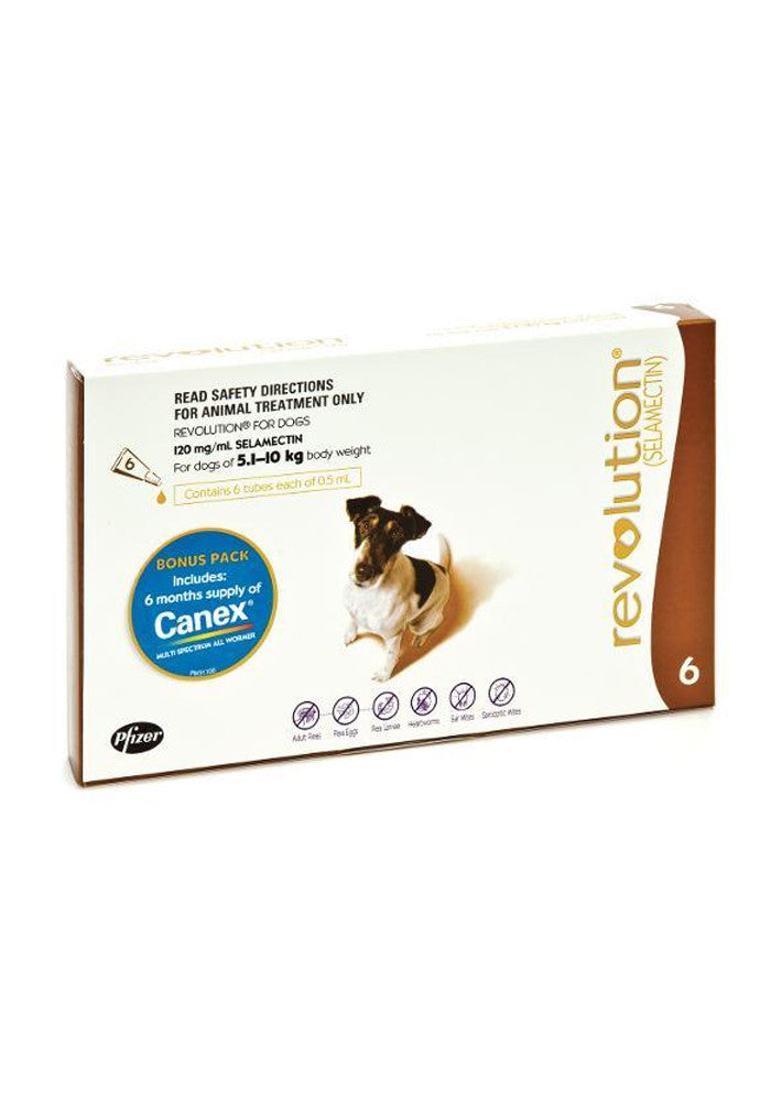 Revolution Small Dog 5.1-10kg