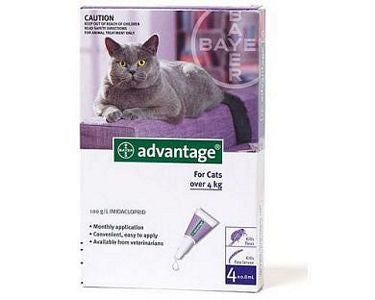 Advantage Large Cat (4-10kg)