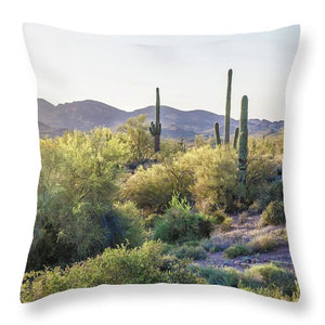 Desert View - Throw Pillow