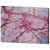 Cherry Blossom Pink Botanical Close Up Art Print - Catch A Star Fine Art