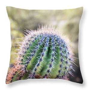 Backlit Southwestern Cactus - Throw Pillow