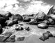 The Baths BVI Black & White Beach Photography - Catch A Star Fine Art