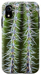 Cactus Close Up - Phone Case
