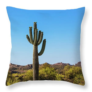 Desert View  Pillow - Catch A Star Fine Art