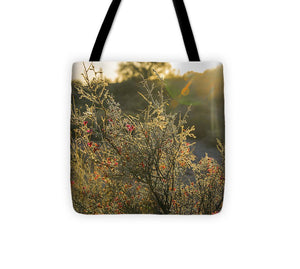 Red Desert Blooms at Sunset - Tote Bag