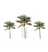 Palm Tree Stickers - set of 3