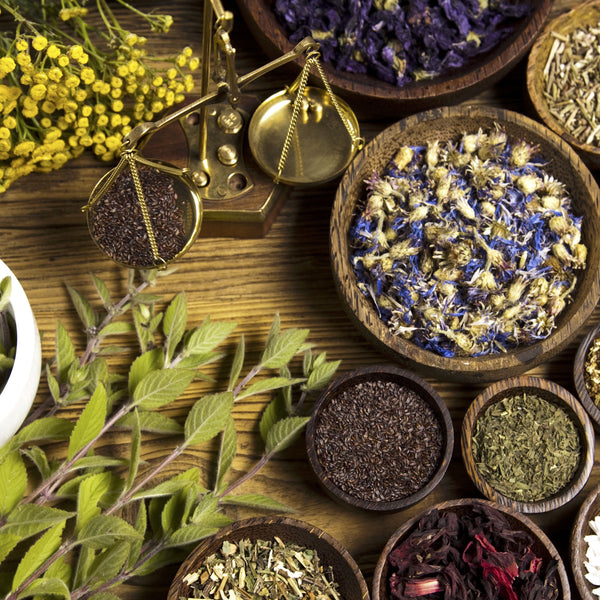 Medicinal apothecary for herbal healing alchemy