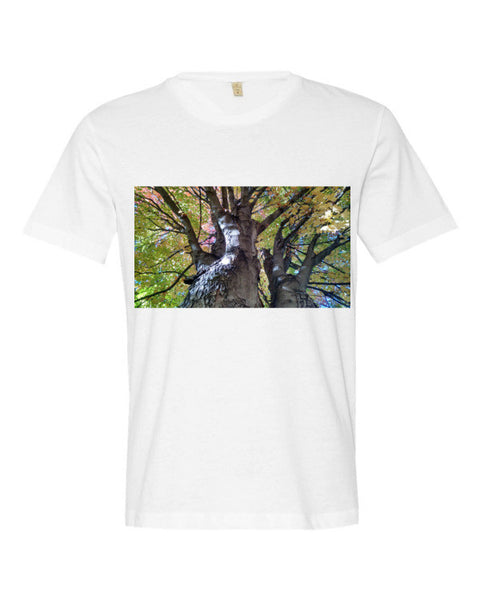The Man in The Tree By KB - The TeaShirt Co.