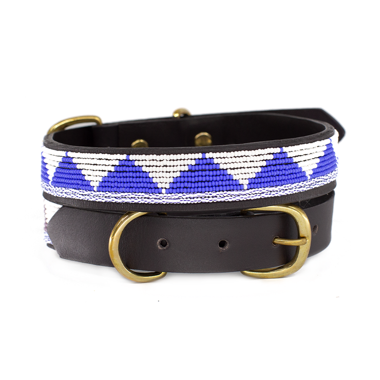 Cobalt Blue Triangle Dog Collar