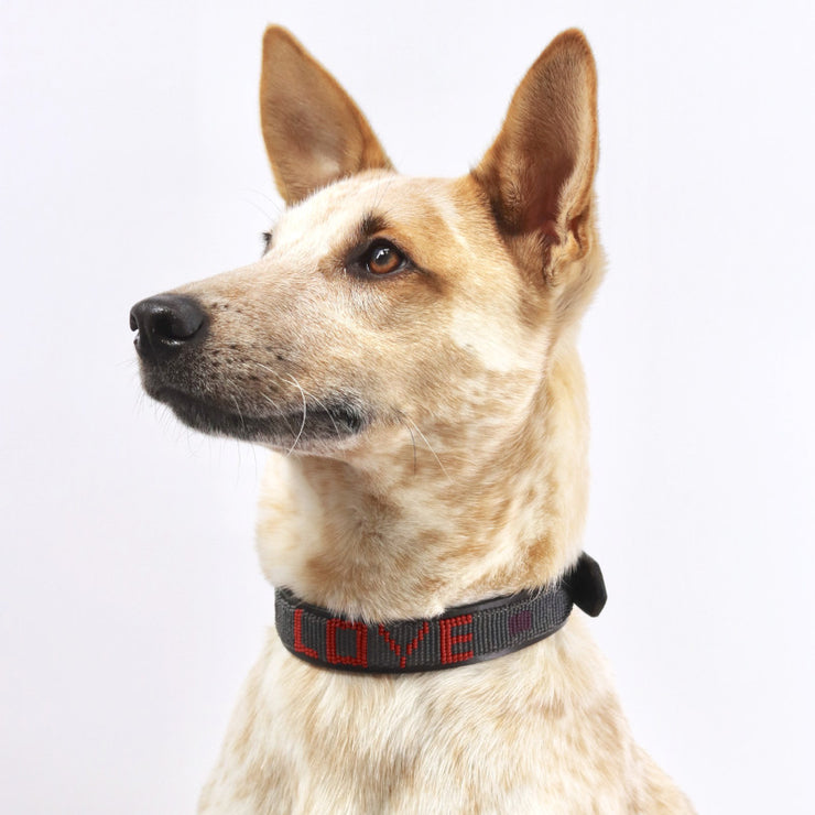 Red Fall Love Collar