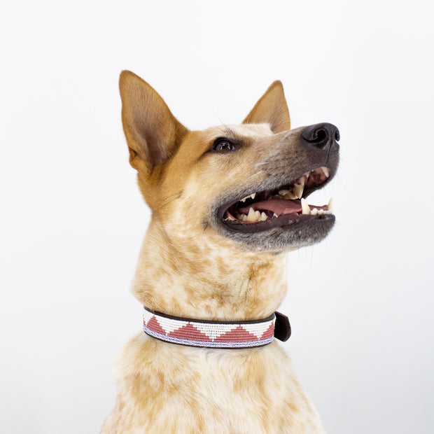 Pink Triangle Dog Collar