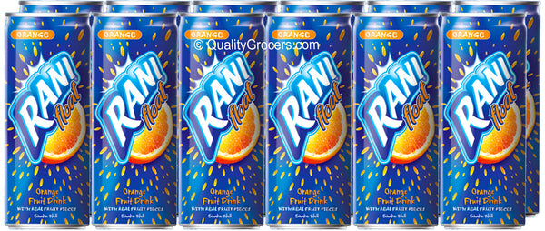 Rani Juice Orange Fruit Float Drink 240ml