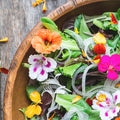 11 Common Edible Flowers