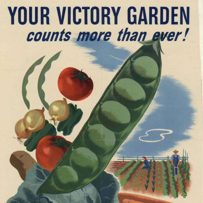 The History of Gardening: Victory Gardens Then and Now