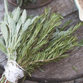 Choosing Between Fresh and Dried Herbs
