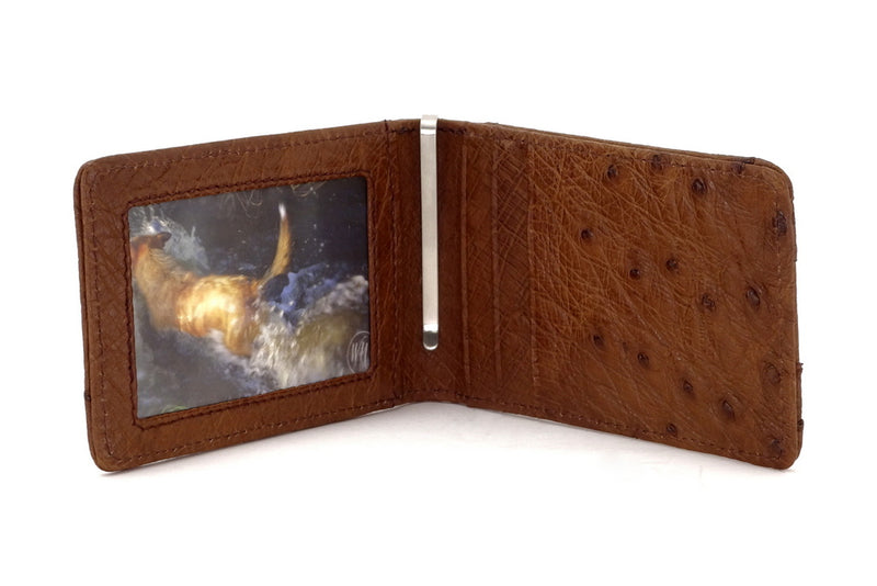 Billfold - Daryle - Brown ostrich leather, ostrich lining man's small wallet showing inside view picture window, money clip & card pockets