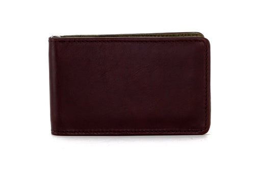 Bill fold - Daryle - Dark brown leather man's small wallet sage lining showing front view