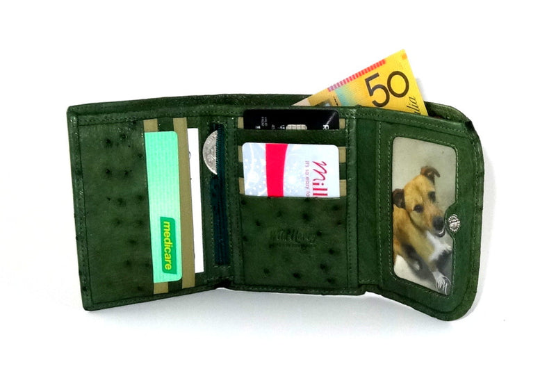 Dorothy  Trifold purse - Green ostrich skin leather ladies wallet inside in use