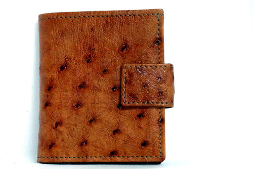 Daniel  Brown ostrich small men's wallet front view