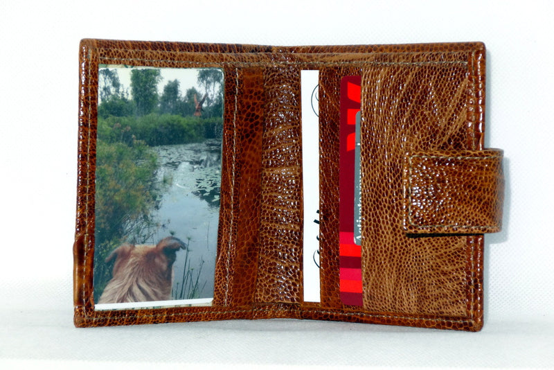 Christine  Tan ostrich leg small ladies purse wallet picture window inside view