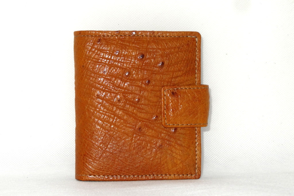 Daniel  Tan ostrich with denim fabric internal small men's wallet front view