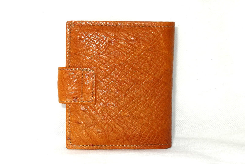 Daniel  Tan ostrich with denim fabric internal small men's wallet back view