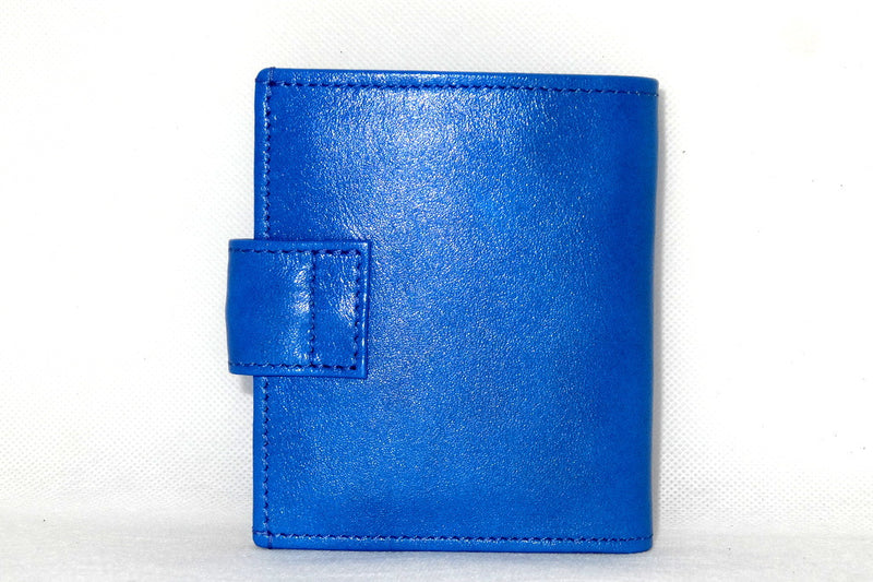 Daniel  Blue smooth leather small men's wallet back view
