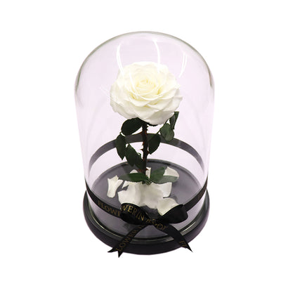 Enchanted Rose - WHITE - flower in a box