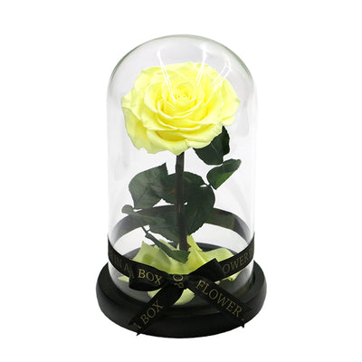 Enchanted Rose Mini - YELLOW - flower in a box