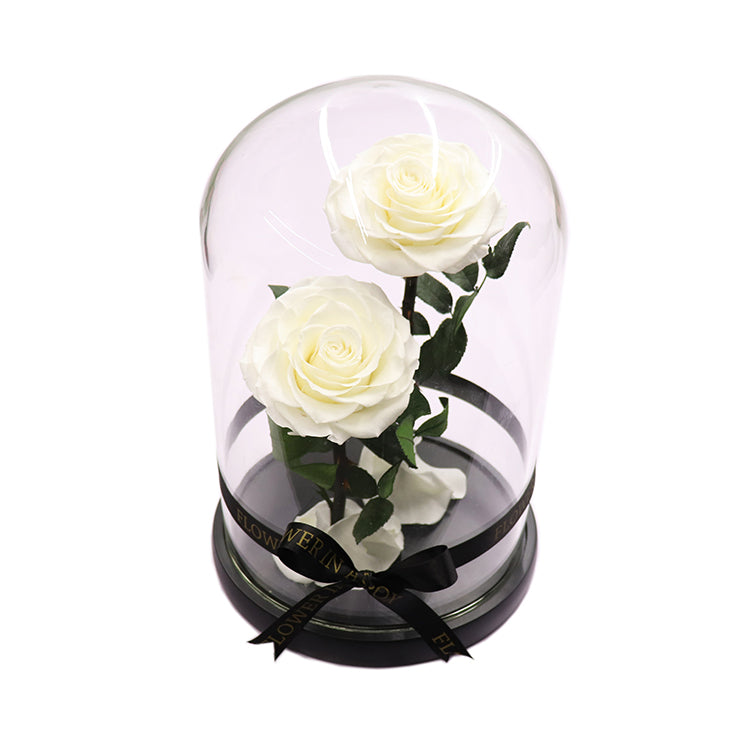 Enchanted Rose Deux- WHITE - flower in a box