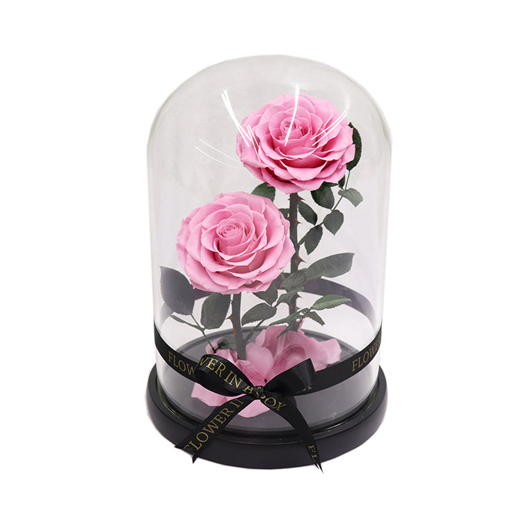 Enchanted Rose Deux- LIGHT PINK - flower in a box