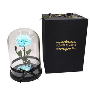 Enchanted Rose - TIFFANY BLUE - flower in a box