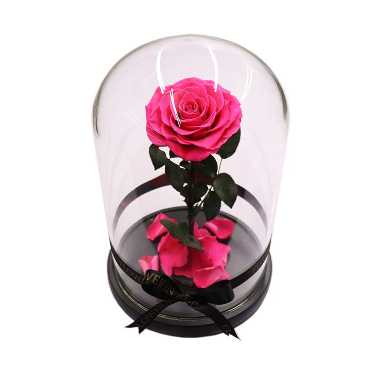 Enchanted Rose - HOT PINK - flower in a box