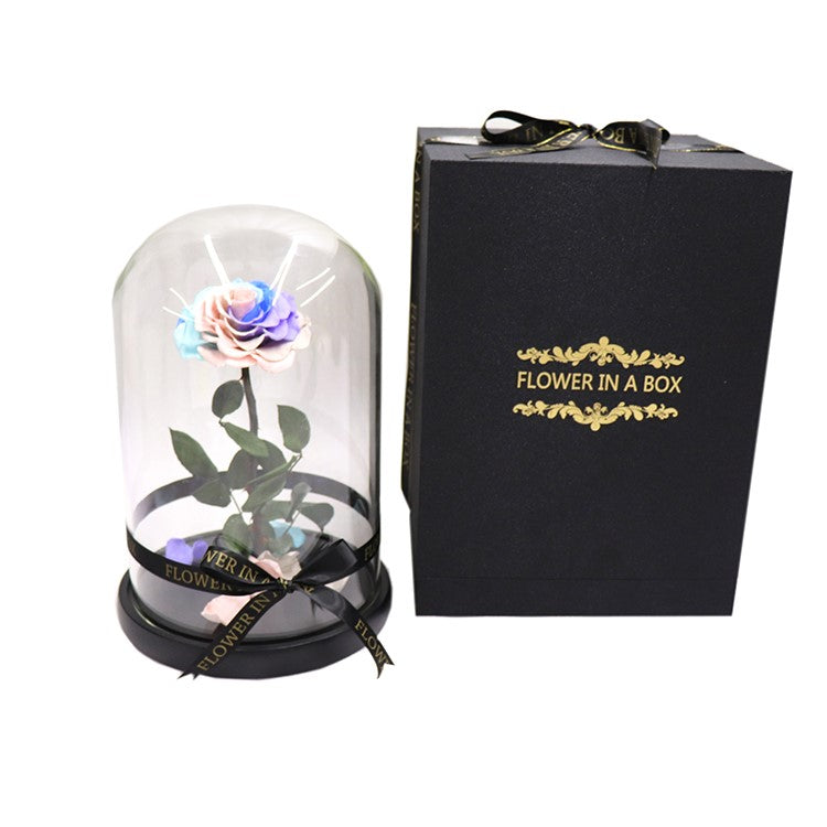 Enchanted Rose - RAINBOW - flower in a box